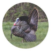 Wild Turkey Classic Round Sticker