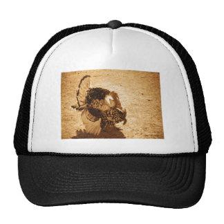 Wild Turkey Drawing Hat