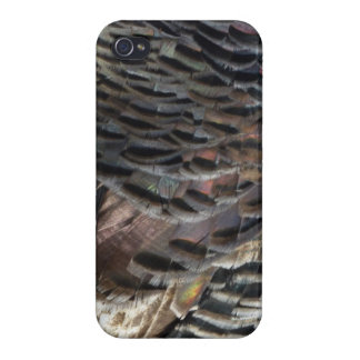 Wild Turkey Feathers I Abstract Nature Design Covers For iPhone 4