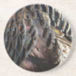 Wild Turkey Feathers I Abstract Nature Design Drink Coasters