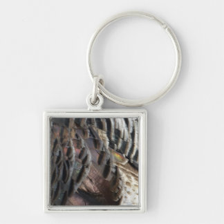 Wild Turkey Feathers I Abstract Nature Design Keychain