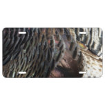 Wild Turkey Feathers I Abstract Nature Design License Plate