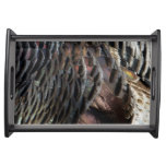 Wild Turkey Feathers I Abstract Nature Design Serving Tray