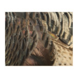 Wild Turkey Feathers I Abstract Nature Design Wood Wall Art