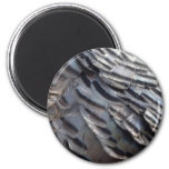Wild Turkey Feathers II Abstract Nature Design 2 Inch Round Magnet