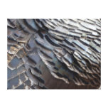 Wild Turkey Feathers II Abstract Nature Design Canvas Print