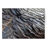 Wild Turkey Feathers II Abstract Nature Design Card