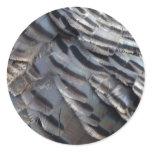 Wild Turkey Feathers II Abstract Nature Design Classic Round Sticker