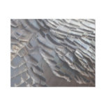 Wild Turkey Feathers II Abstract Nature Design Gallery Wrap