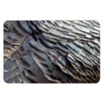 Wild Turkey Feathers II Abstract Nature Design Magnet