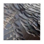 Wild Turkey Feathers II Abstract Nature Design Tile
