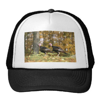 Wild turkey trucker hat