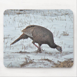 Wild Turkey in Snowy Field Mouse Pad