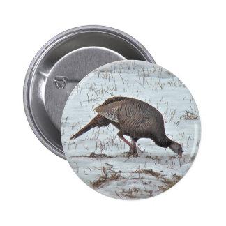 Wild Turkey in Snowy Field Pinback Button