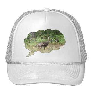 Wild Turkey inside Hats