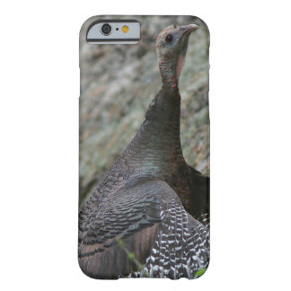Wild Turkey, iPhone 6 case. Barely There iPhone 6 Case