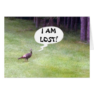 WILD TURKEY IS SO LOST AND SO BLUE WITHOUT YOU CARD