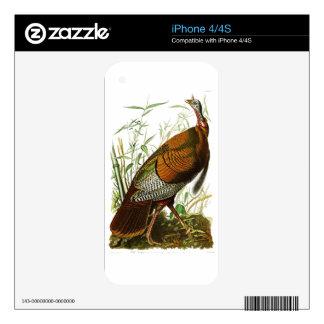 Wild Turkey John James Audubon Birds of America Decals For iPhone 4