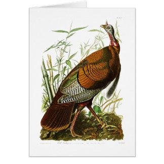Wild Turkey John James Audubon Birds of America Greeting Card