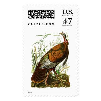 Wild Turkey John James Audubon Birds of America Postage
