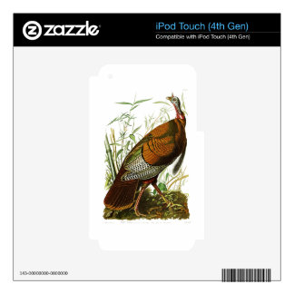 Wild Turkey John James Audubon Birds of America Skins For iPod Touch 4G