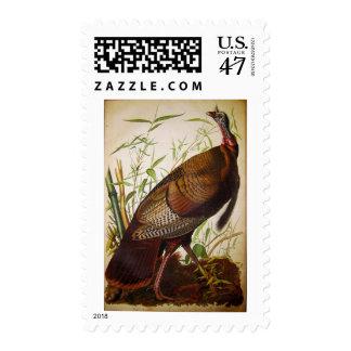 Wild Turkey, John James Audubon Stamp
