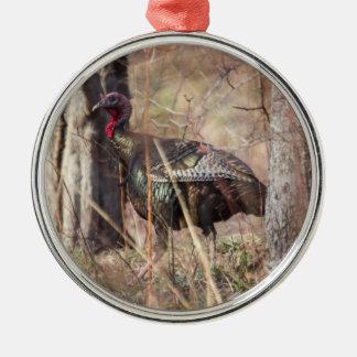 Wild Turkey Ornaments