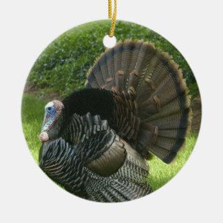 Wild Turkey Ornament
