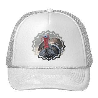Wild Turkey Picture Baseball Hat