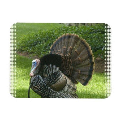 Wild Turkey Premium Magnet