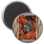 wild turkey refrigerator magnet