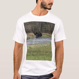 Wild Turkey Shirt