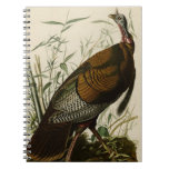 Wild Turkey Spiral Note Books