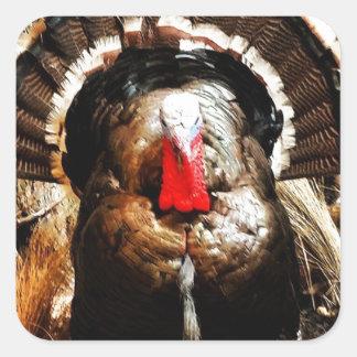 Wild Turkey Square Sticker