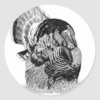 Wild Turkey Round Sticker