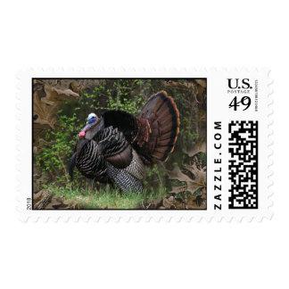 Wild Turkey Strutting Stamps