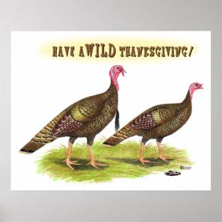 Wild turkey Thanksgiving Poster