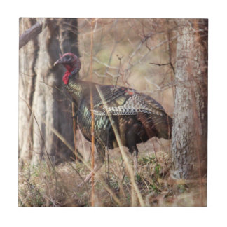 Wild Turkey Ceramic Tiles