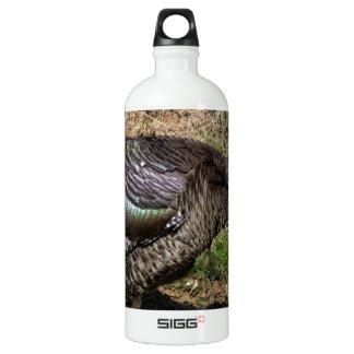 Wild Turkey Vulture - Buzzard - Cathartes aura SIGG Traveler 1.0L Water Bottle