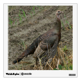 Wild Turkey, Wall Decal. Wall Decal
