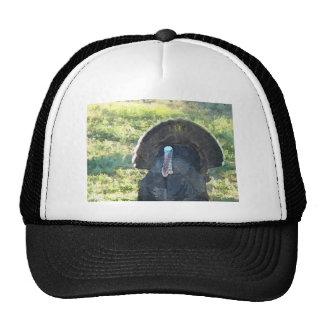 Wild Turkey Watercolor Mesh Hat