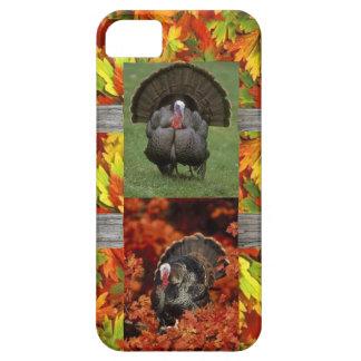 wild turkeys i phone 5 case
