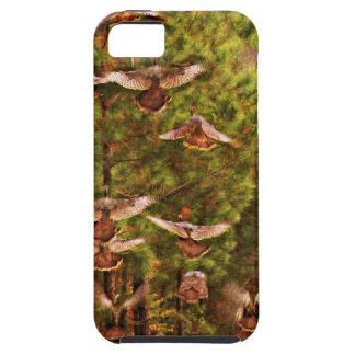 Wild Turkeys iPhone SE/5/5s Case