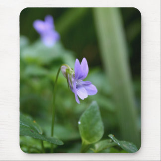 Wild Violets - Floral Photography Mouse Pad