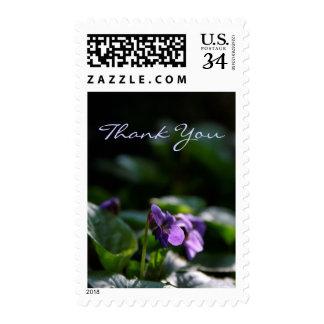 Wild Violets Sympathy Thank You Postage