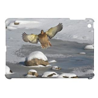 Wild Water Fowl Wildlife Bird-lover Duck design Case For The iPad Mini