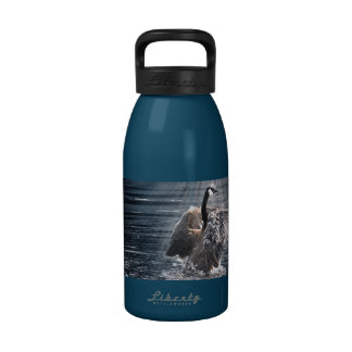 Wild Water Fowl Wildlife Canada Geese Drinking Bottles