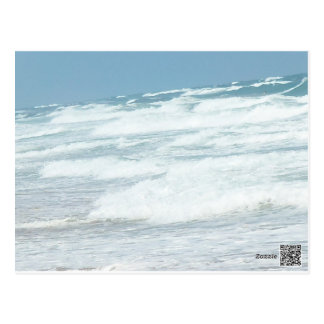 WILD WAVES OF DELRAY BEACH POSTCARD