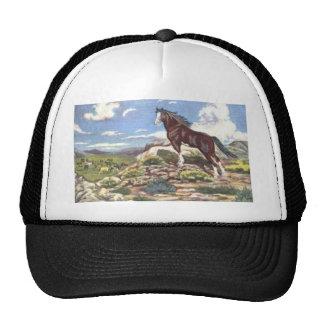 wild west 4 trucker hat