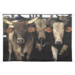 Wild West Rodeo Cow Bulls Southwest MoJo Placemat Cloth Placemat